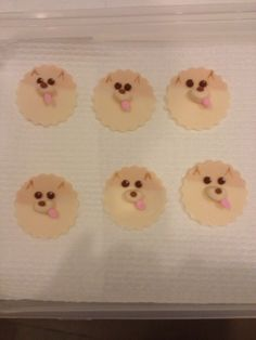 Pomeranian Cupcake Toppers made for my sister in laws birthday :)
