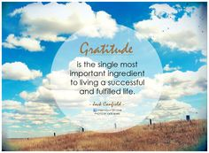 Gratitude is the single most important ingredient to living a successful and fulfilled life.