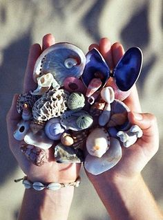 Where the Land Meets the Sea - Beach Treasure, Jeffreys Bay, South Africa Summer Of Love, Summer Fun, Summer Goals, No Bad Days, Summer Vibes, Sea Shells, South Africa, Summertime, Religion