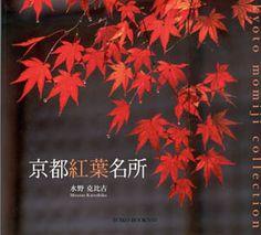 Kyoto, Bonsai, Books, Stamps, Languages, Author, Japanese Language, Book, Seals