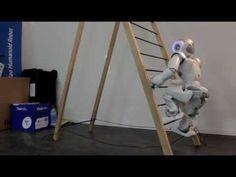 A stair climbing robot