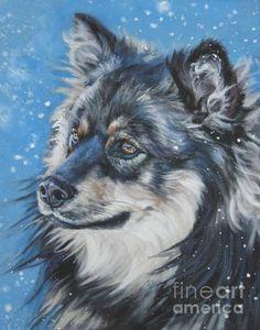 Finnish Lapphund by Lee Ann Shepard
