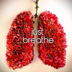 http://tinypost.co/posts/197121/    Tiny Post of the Day!    Just breathe!