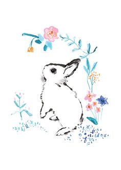 Dwarf Hotot Bunny Print Limited Edition by flossandco on Etsy, £8.00