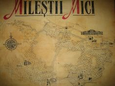 """Milestii Mici is home to the """"Golden Collection. It's the underground wine cellar. It's about 40-85 meters below ground. Good thing I married a Moldovan to visit this place I would call heaven."""