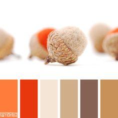 Autumn Acorns #patternpod #patternpodcolor #color #colorpalettes