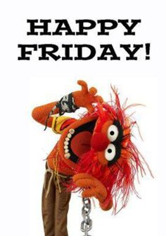 Happy Friday Animals, hope your day is extra wild and fun!! #animal #muppetlove #themuppets