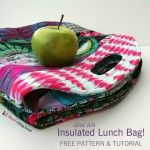 Insulated Lunch Sack Tutorial {Velcro version}