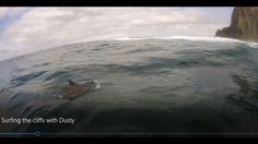 Surprise visitor during a tow session at the Cliffs of Moher with rider Peter Conroy Surfing Ireland, Clare Ireland, Cliffs Of Moher, Emerald Isle, Big Waves, Dolphins, Image, Beautiful