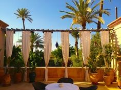 The view from the yellow lounge terrasse on the palmgrove surroundings. Courtesy of Paul Thompson