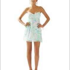 Brand new Lilly Pulitzer Dorothy dress. Size 2 Adorable Lilly Pulitzer dress. NWT Lilly Pulitzer Dresses Mini