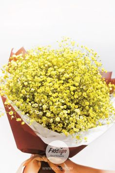 BABY'S BREATH MAKES TO HAPPINESS DAY