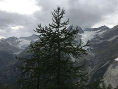 Uitzicht vanuit Europahütte, twee gletschers bij Weisskopf.
