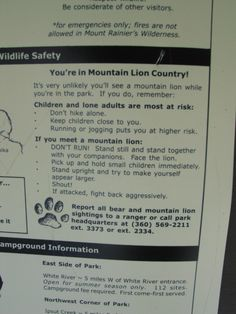 What to do if you meet a mountain lion. © www.mcguire.co