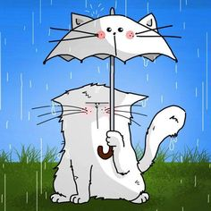 chat et parapluie / cat and umbrella. This is soooo cute! Cool Cats, Cat Paws, Dog Cat, Image Chat, Umbrella Art, Photo Chat, Raining Cats And Dogs, Cat Posters, Cat Colors