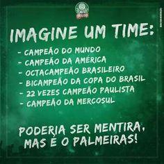 Não fosse o Palmeiras