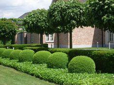 Landscape design by Luk Dirkx Boxwood Garden, Topiary Garden, Garden Shrubs, Lush Garden, Garden Pool, Garden Cottage, Dream Garden, Home Landscaping, Garden Landscape Design