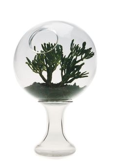 """https://www.cityblis.com/5227/item/10809  2001 A Space Terrarium - $800 by Esque Studio  Two piece terrarium, fish bowl, or water filled orb. The two forms nestle together, allowing the opening to tilt at any angle. 8"""" diameter  Design by Andi Kovel"""