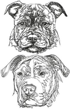 Advanced Embroidery Designs - Staffordshire Bull Terrier Set