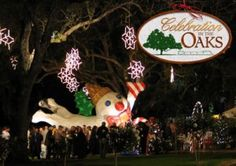 Christmas/Celebration in the Oaks