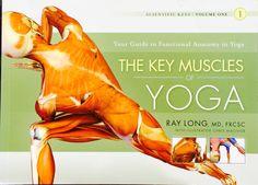 Key Muscules of Hatha Yoga