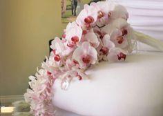 Google Image Result for http://blog.karentran.com/wp-content/uploads/2009/08/pink-phaleanopsis-bouquet1.jpg