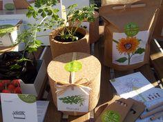 Mini-jardineiros girassol Life in a bag