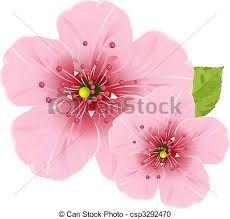 Image result for cherries blossom flower icon