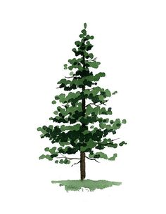 Pine Trees Art Prints - Set of Three - Wall Decor - Watercolor Painting Pine Trees Art Prints - Set Watercolor Trees, Watercolor Paintings, Watercolor Paper, Painting Art, Pine Tree Art, Tree Tree, Tree Photoshop, Tree Photography, Small Trees
