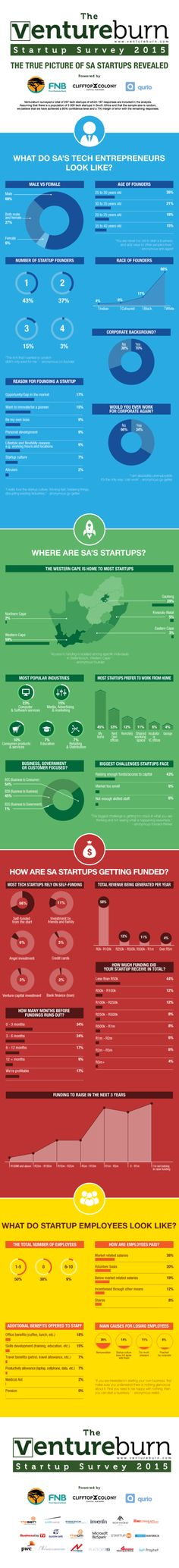 What South African Tech Startups look like - Startup Survey 2015 Data Visualization, Need To Know, Infographics, Insight, Entrepreneur, How To Make Money, Scene, Startups, Business