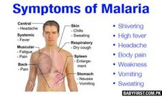 malaria symptoms, symptoms of malaria
