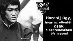 Bruce Lee, Karma, Che Guevara, Van, Quotes, Life, Bottle, Food, Quotations