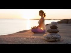 Résumé de l'art de la méditation de Matthieu Ricard - YouTube