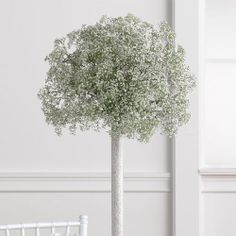 Baby's Breath Re-Visited | Eventful Occasions | Eau Claire Wedding Planner | Minneapolis Wedding Planner