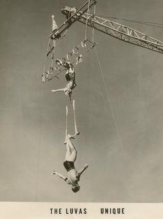 The Luva's Aerial Acrobatics, Aerial Dance, Circus Aesthetic, Circus Performers, Vintage Circus, Sideshow, Art Festival, Carnival, Elephant
