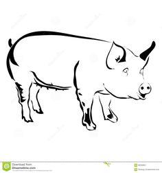Outline pig vector illustration.