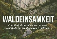 #conexión #naturaleza #soledad