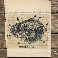 medical student ophthalmologist doctor eye EENT 1914 handwritten old book page print eye gift by DreamyPapers http://etsy.me/1s0pVVa #Etsy medical student ophthalmologist doctor eye EENT by DreamyPapers, $12.50