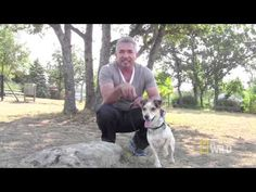 "Exlusive Behind the Scenes Clip from ""Mambo Madness"" - Cesar Millan's ""Leader of the Pack"""