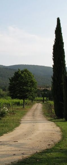 Path to discovery in the Luberon region of Provence, France • photo: Sunday Taylor on Ciao Domenica