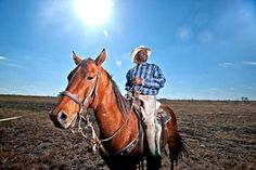 Black cowboys where brilliant horseman, and many went on to become ...