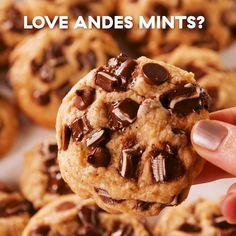 Andes Chocolate Mint Cookies If you're a fan of mint + chocolate desserts, these cookies will blow your mind. The espresso powder is technically optional, but honestly, it's what makes them so special. Get the recipe at . Easy Desserts, Delicious Desserts, Yummy Food, Tasty, Baking Desserts, Cake Baking, Gooey Chocolate Chip Cookies, Chocolate Desserts, Chocolate Chips