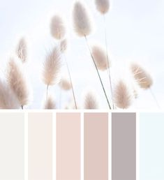 Bedroom Colour Palette, Colour Pallette, Bedroom Color Schemes, Taupe Color Palettes, Nature Color Palette, Pastel Palette, Paint Colors For Home, House Colors, Nursery Paint Colors