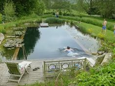 Natural swimming pools - Low impact living info, training, products & servicesYou can f. Natural Swimming Ponds, Small Swimming Pools, Natural Pond, Swimming Pools Backyard, Ponds Backyard, Swimming Pool Designs, Pool Landscaping, Pool Decks, Lap Pools