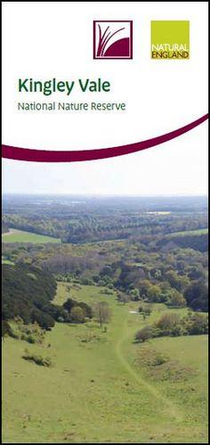 Kingley Vale National Nature Reserve - Visitor Leaflet - NE275