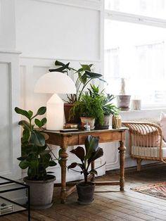 Como Decorar um Canto da Sala: 5 Jeitos • #Plantas são perfeitas para decorar aquele canto vazio da #sala. Você pode agrupar os vasos no chão, pendurar alguns no teto ou usar um pequeno móvel, como um aparador ou um banquinho para agrupar vasinhos pequenos.