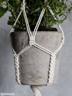 macrame plant hanger+macrame+macrame wall hanging+macrame patterns+macrame projects+macrame diy+macrame knots+macrame plant hanger diy+TWOME I Macrame & Natural Dyer Maker & Educator+MangoAndMore macrame studio Macrame Plant Holder, Macrame Plant Hangers, Plant Holders, Diy Arts And Crafts, Creative Crafts, Mini Vasos, Macrame Knots, Micro Macrame, Macrame Bracelets