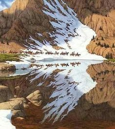 The reflection looks like an eagle flying.looks just like a Bev Doolittle painting. All Nature, Amazing Nature, One With Nature, Amazing Photography, Nature Photography, Photography Storytelling, Native American Art, Optical Illusions, Belle Photo