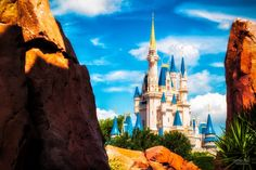 Reasons That Florida Become A Most Popular Place For Family Vacations_7