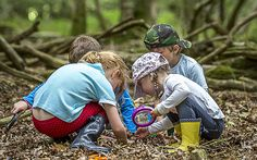 Becky Dickinson visits a Forest School and examines how the   Scandinavian approach to education is spreading in the UK